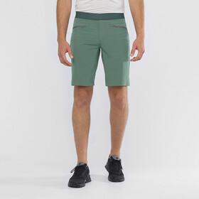 Salomon Wayfarer Pantalones Cortos Pull On Hombre, balsam green